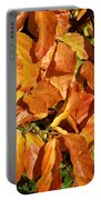 Autumn Leaves 82 Portable Battery Charger