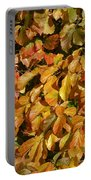 Autumn Leaves 83 Portable Battery Charger
