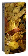 Autumn Leaves 94 Portable Battery Charger