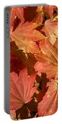 Autumn Leaves 98 Portable Battery Charger