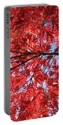 Autumn Leaves And Blue Sky Portable Battery Charger