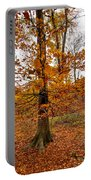 Autumn Leaves Common Wood  Portable Battery Charger
