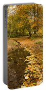 Autumn Leaves In A Burn Portable Battery Charger