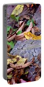 Autumn Leaves In Creek Bed Portable Battery Charger