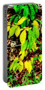 Autumn Leaves In Green And Yellow Portable Battery Charger