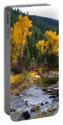 Autumn Leaves Of Red And Gold Portable Battery Charger