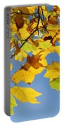 Autumn Leaves Of The Tulip Tree Portable Battery Charger