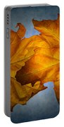 Autumn Leaves On Blue Portable Battery Charger