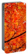 Glorious Autumn Leaves Portable Battery Charger