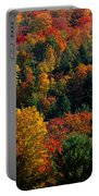 Autumn Leaves Vermont Usa Portable Battery Charger