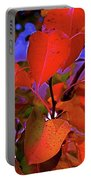 Autumn Magic 1 Portable Battery Charger