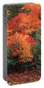 Autumn Maple Trees Portable Battery Charger