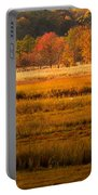 Autumn Marsh Portable Battery Charger