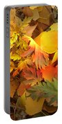 Autumn Masquerade Portable Battery Charger by Martin Howard