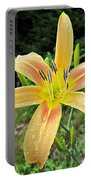 Autumn Minaret Daylily Portable Battery Charger