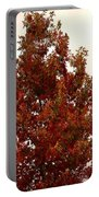 Autumn Oak On A Cloudy Day Portable Battery Charger