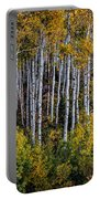 Autumn On Mcclure Pass Portable Battery Charger