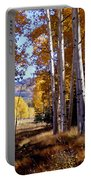 Autumn Paint Chama New Mexico Portable Battery Charger
