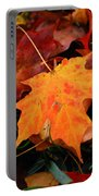 Autumn Palette  Portable Battery Charger