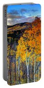 Autumn Pass Portable Battery Charger