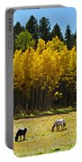 Autumn Pasture Portable Battery Charger