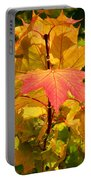 Autumn Pigmentation Portable Battery Charger