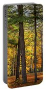 Autumn Pines Square Portable Battery Charger