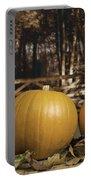 Autumn Pumpkins Portable Battery Charger by Amanda Elwell