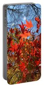 Autumn Reach  Portable Battery Charger