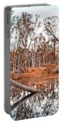 Autumn Reflections V2 Portable Battery Charger
