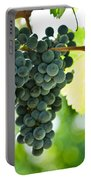 Autumn Ripe Red Wine Grapes Right Before Harvest Portable Battery Charger by Ulrich Schade