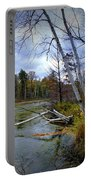 Autumn Scene Of Along The Shore Of The Platte River In Michigan Portable Battery Charger