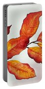 Autumn Portable Battery Charger