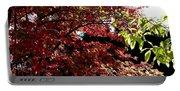 Autumn Snowball Bush Portable Battery Charger