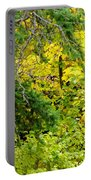 Autumn Splendor 14  Portable Battery Charger