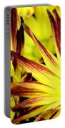 Autumn Starburst Portable Battery Charger