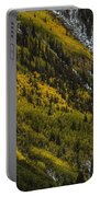 Autumn Streaks Portable Battery Charger