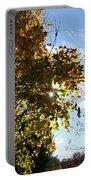 Autumn Sun Portable Battery Charger