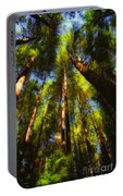 Autumn Sunlight Cast On Majestic Green Oregon Old Growth Forest  Portable Battery Charger