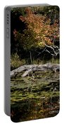 Autumn Swamp Portable Battery Charger