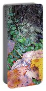 Autumn Tree Trunk  Portable Battery Charger
