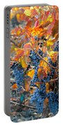 Autumn Vineyard Sunlight Portable Battery Charger