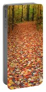 Autumn Walk In Ohio Portable Battery Charger
