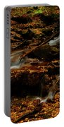 Autumn Washed Away Portable Battery Charger