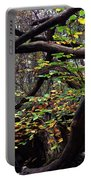 Autumn Wild Nature Denmark Portable Battery Charger
