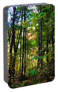 Autumn Wood Portable Battery Charger