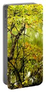 Autumn's First Reflections II Portable Battery Charger