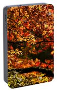 Autumn's Glory Portable Battery Charger