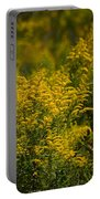 Autumn's Gold 2013 Portable Battery Charger
