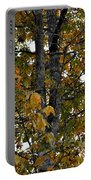 Autumn's Golden Hickory Tree Portable Battery Charger